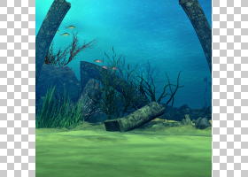 水下场景背景素材 (10)