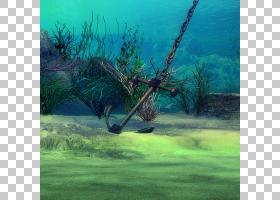 水下场景背景素材 (5)