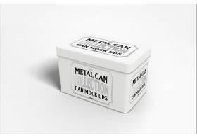 金屬質感包裝樣機