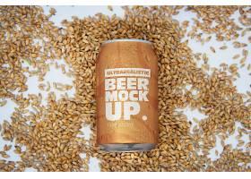 易拉罐啤酒产品包装样机