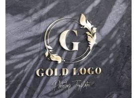 logo墙体金属效果