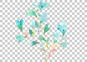 水彩绿色叶子