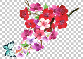盛开的花卉免扣元素图片