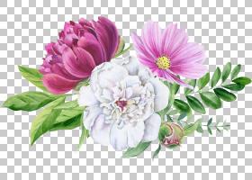 鲜花花卉免扣元素图片