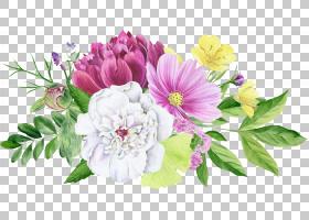 植物花卉免扣元素图片