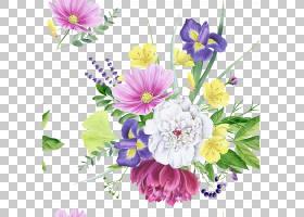植物花卉免扣元素素材图片