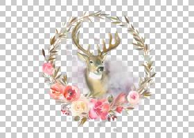 小鹿和花卉边框图片