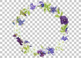 花卉花环图片