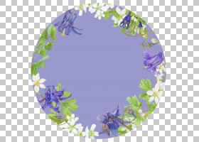 花卉椭圆边框图片