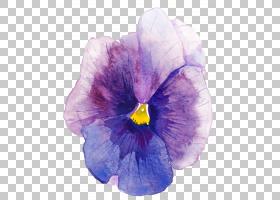 蓝色花卉免扣元素素材
