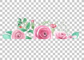 水彩花卉边框免扣元素素材