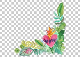 水彩花卉边框插画元素免扣素材