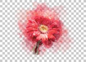 清新手绘水彩植物花卉免扣装饰素材