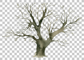 水彩树干树木免扣元素素材