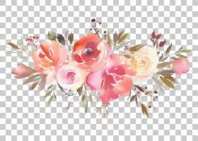 花卉免扣元素素材