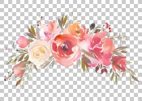清新水彩花卉免扣元素素材