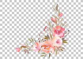 水彩花朵边框