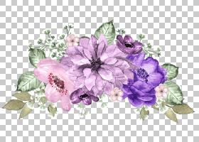 紫色的花朵和绿叶