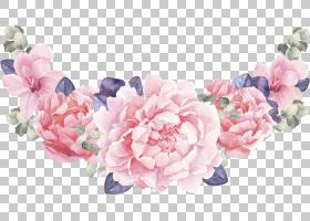 清新水彩植物花卉免扣素材