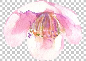 小清新文艺水彩植物花卉手绘插画免扣素材