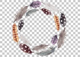 水彩羽毛免扣装饰边框花圈素材