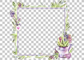 欧式水彩花纹边框