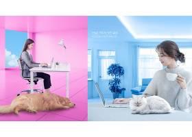 简洁韩式新居生活女子办公与宠物陪伴主题海报设计