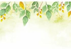清新植物花卉叶子主题矢量装饰背景图片