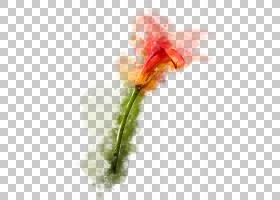 手绘水刺植物花卉免扣插画素材图片