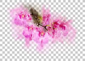 手绘粉紫色花卉免扣插画素材图片