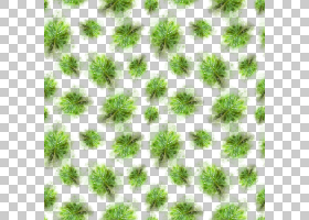 手绘水彩植物叶子无缝装饰图案免扣插画素材