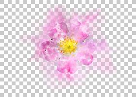 手绘水彩粉色花卉免扣插画素材图片