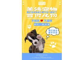 善待动物卡通黄色小狗公益宣传海报