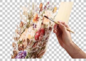 正在水彩绘画的手