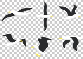 鸟类线画,线路,徽标,机翼,不会飞的鸟,绘图,喙,海鸟,海鸥,信天翁,
