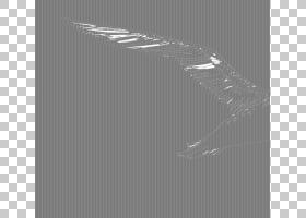 鸟类线画,鸭子,鹅和天鹅,黑白相间,手,喙,尾巴,机翼,图案,水鸟,字