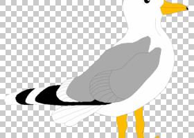 鸟线艺术,鹅,尾巴,海鸥,欧洲鲱鸥,喙,动物,线条艺术,信天翁,鸟巢,