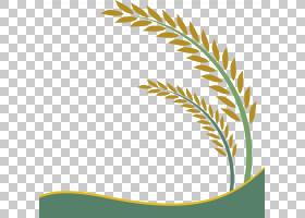 绿草背景,线路,文本,绿色,黄色,树,角度,叶,草,绘图,谷粒,谷类食