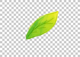 绿草背景,草,线路,绿色,种,电脑,叶,