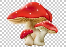 蘑菇卡通,BBCode,美味牛肝菌,常见食用菌,真菌,食用菌,蘑菇,