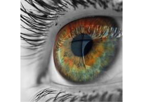 人类多彩的眼睛视界