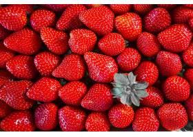 新鲜的鲜红草莓