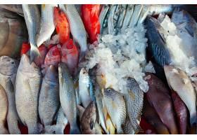 新鲜的海鱼