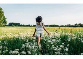 阳光穿梭花丛的女生背影