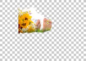 清新躺在草地上的人物足部脚底素材
