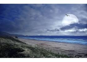 地球,海滩,壁纸,(38)