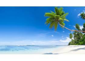 地球,岛,蓝色,海洋,夏天,壁纸,图片