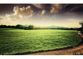 地球,A,轻柔的,世界,绿色的,草,国家,路,壁纸,图片