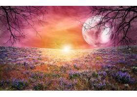 地球,A,轻柔的,世界,壁纸,(10)图片