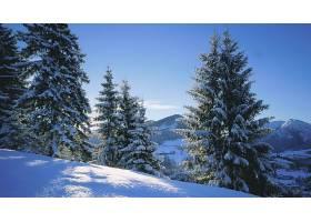 地球,冬天的,壁纸,(196)